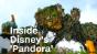 Inside Disney's 'Pandora: World of Avatar'