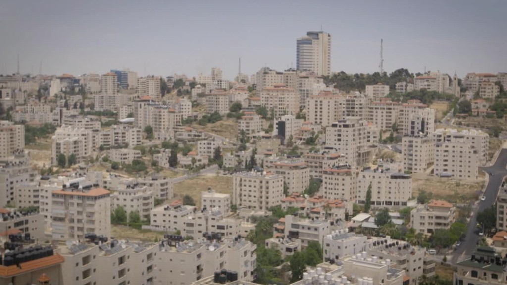 How a website blooms in the West Bank