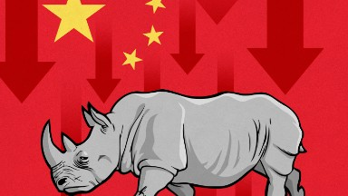 What's a 'gray rhino' and why did it cause Chinese stocks to drop?