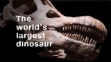 Titanosaur: The world's largest dinosaur