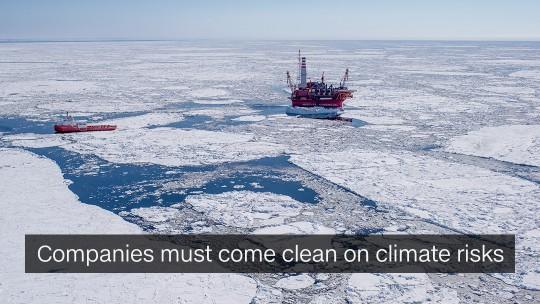 Climate Risks Companies