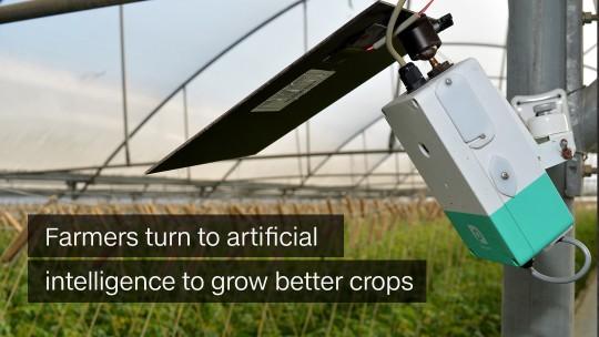 Farming AI