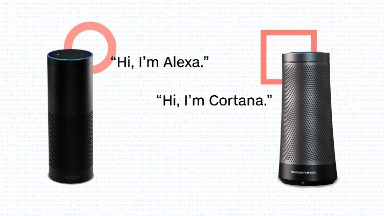 Alexa has a new friend: Cortana