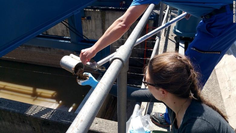 Switzerland sewage research gold
