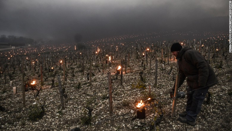 Global wine production drops to historic low