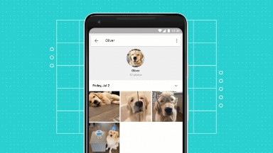 Google Photos can now identify your pets