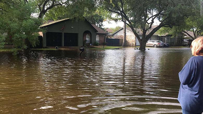 anna rosalez harvey flooding