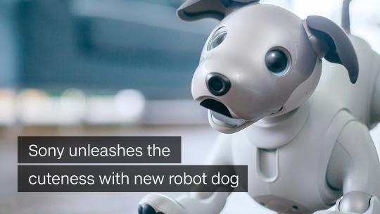 Recirc Sony unleashes the cuteness with new robot dog