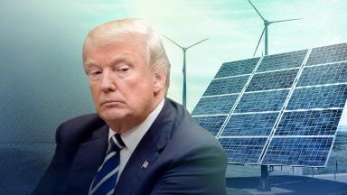 Trump hasn't killed the renewable energy movement