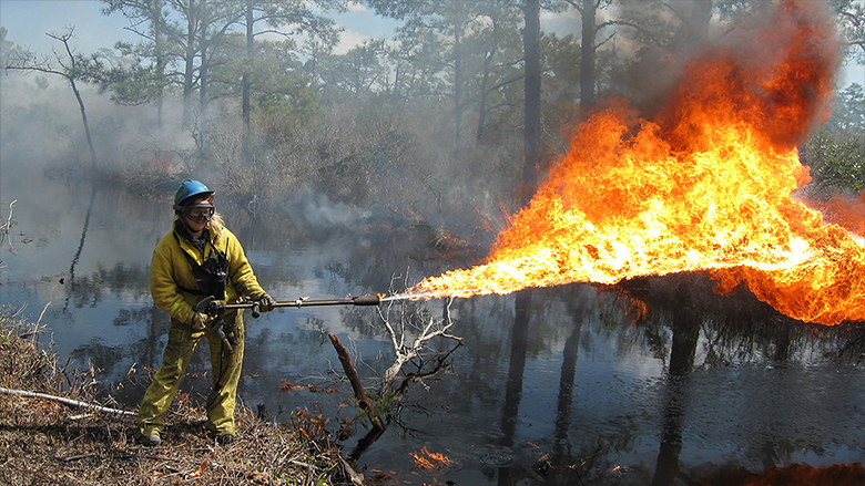 Why would you buy a flamethrower? Here are five good reasons