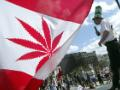 Cannabis stocks soar to new highs