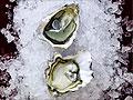 Love on the half shell