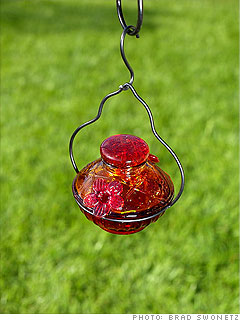 PAR-A-SOL Hummingbird Feeders - The Bird Shed, bird feeders, bird