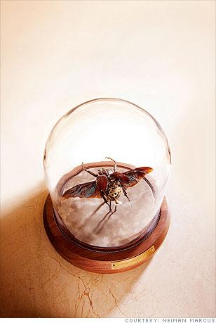 Insect lab specimen artwork