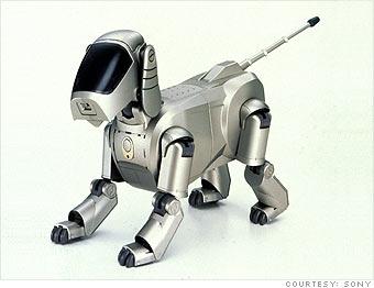 Miss: AIBO robots