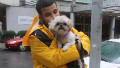 Thumbnail for Superstorm Sandy sends pets scurrying - CNN.com