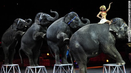 Ringling Bros. elephants to perform in last show