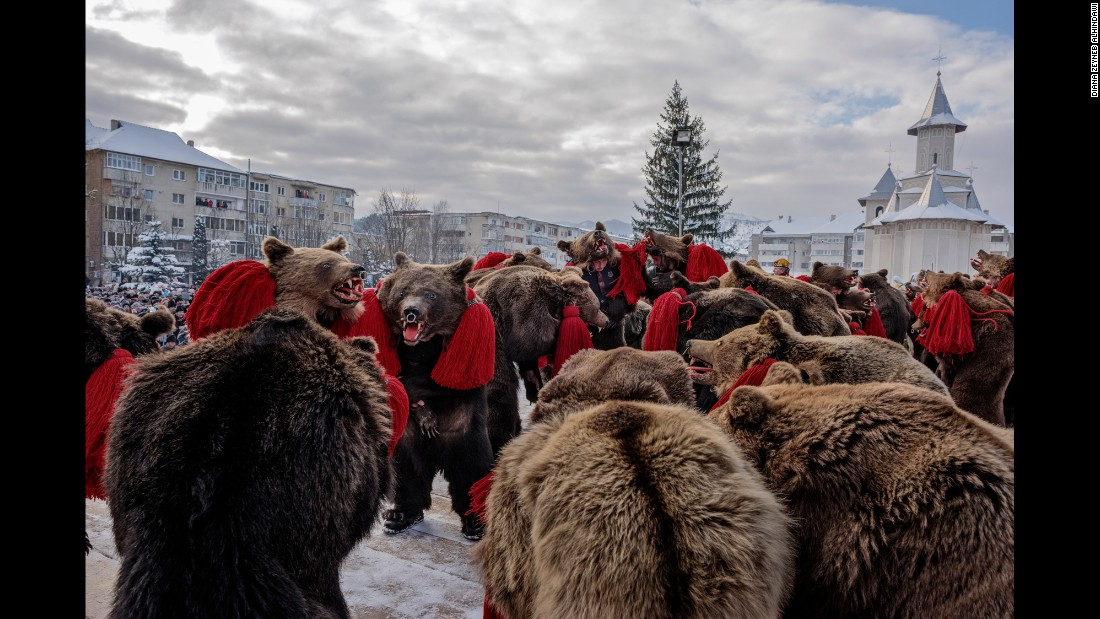 """Each winter in the rural Moldova region of Romania, locals dressed in bearskins gather in troupes to perform dances to drive away evil spirits. In 2014, New York-based photographer <a href=""""http://www.dianazeynebalhindawi.com/"""" target=""""_blank"""">Diana Zeyneb Alhindawi</a> captured the annual festivities."""