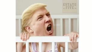 Trump and Cruz find common ground on 'Trumpertantrum'