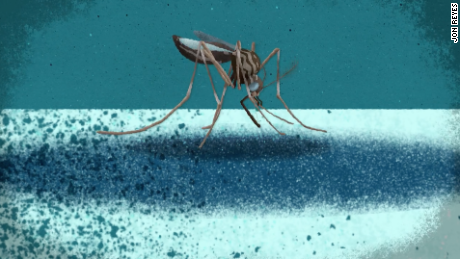 Zika in Florida: 2nd possible non-travel case investigated