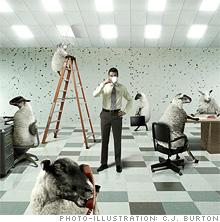 office.03.jpg