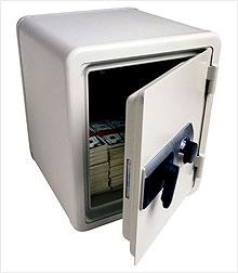 dividend_money_safe.ce.03.jpg