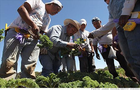 migrant_workers.gi.top.jpg
