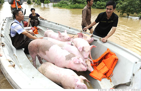 Chinese farmers rescue their pigs in flood waters after heavy rains hit east China in June. Pork prices have surged more than 50% in China over the last year.