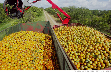Large shipments of orange juice and other produce could easily be tracked and traced back to their source, pinpointing where outbreaks begin.
