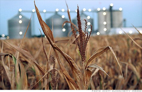 High corn prices sparked by the drought are leading to renewed calls for an end to the ethanol mandate.