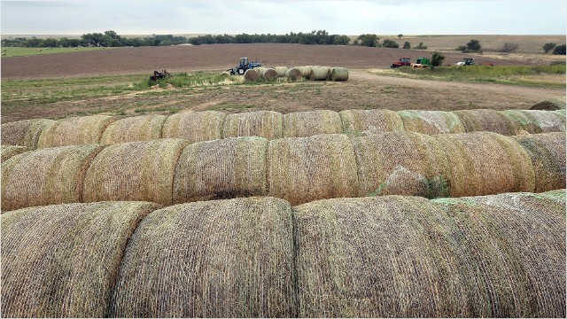 Independent Farms Rake In Millions