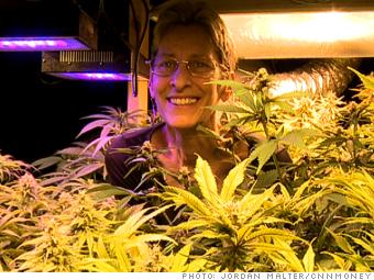 marijuana industry muraco kyashna