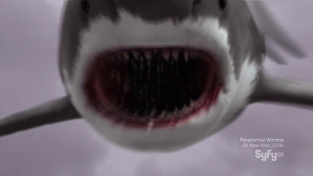 How 'Sharknado' won the Internet
