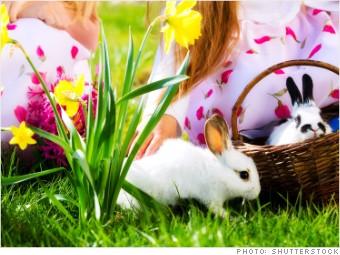 surprising company boycotts bunnies easter