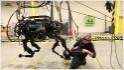 Google moves into military robotics
