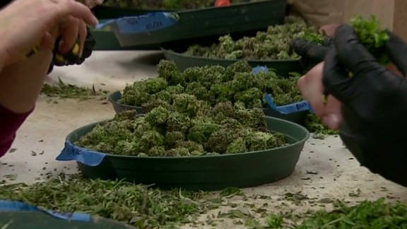 New bank could save the pot industry