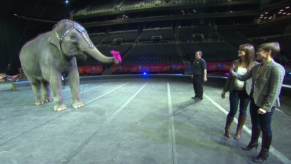 How to keep a 150-year old circus running