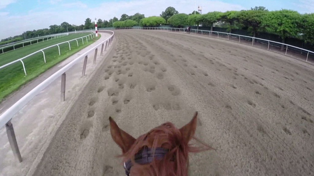 Ride Belmont like California Chrome