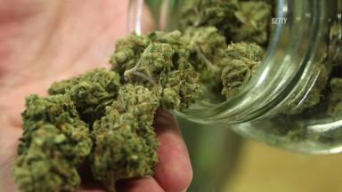 Colorado's pot experiment