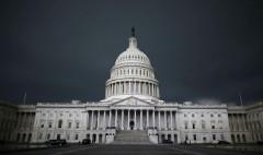 Top 10 stocks members of Congress own