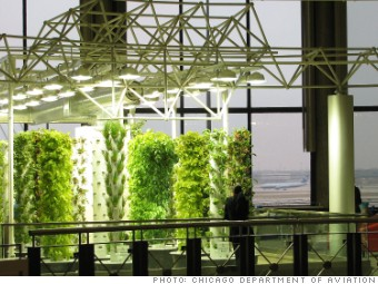 airport amenties