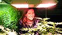 Pot startups cash in on wave of legalization