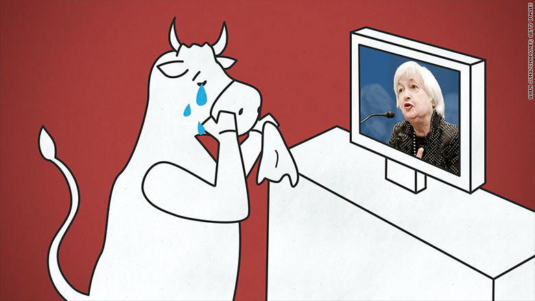 crying bull yellen