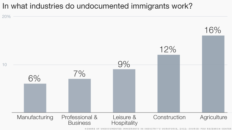 undocumented immigrants industries