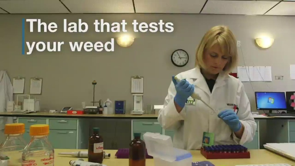 Inside the lab that tests your weed