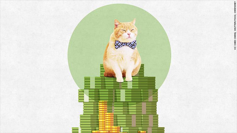 hk cat cash