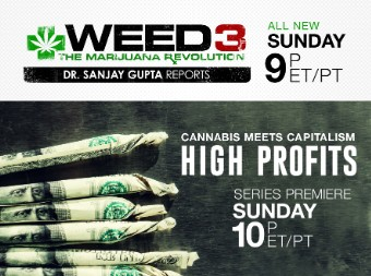 high profit weed 3 small