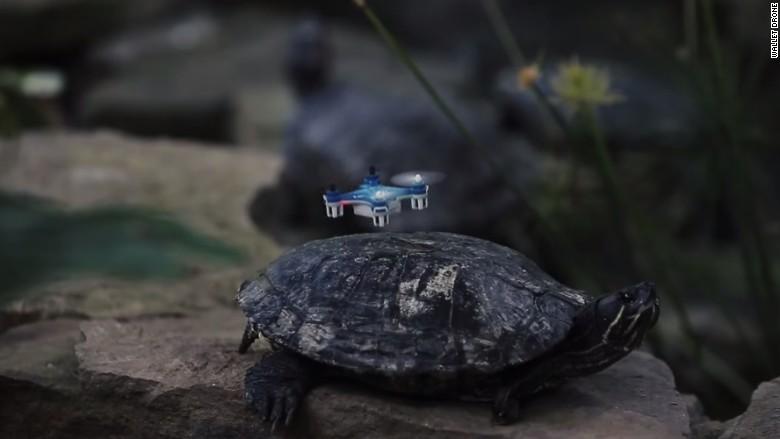 weird gadget wallet drone