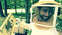 The man who wants to save the bees