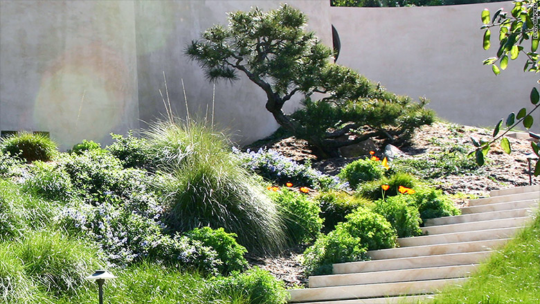 california landscaping staircase